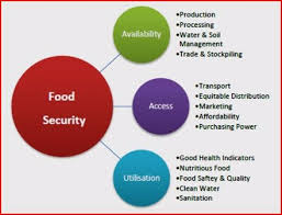 Maharashtra Food security
